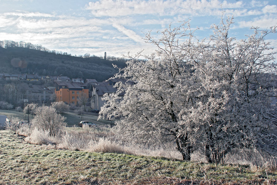 Winter in den Fuchslöchern bei Jena