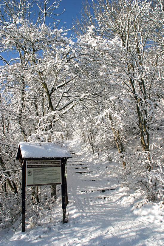 Auf verschneiten Wegen zum Fuchsturm