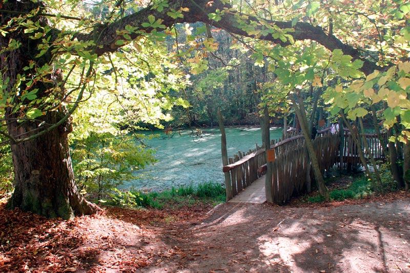 Teichromantik im Herbst