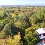 baumkronenpfad-panorama-7