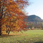 Paradiesische Herbstimpressionen