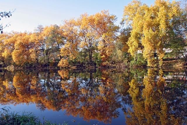 Herbst an der Saale