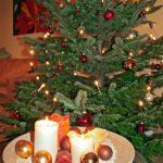 Der Baum steht – Weihnachten kann kommen