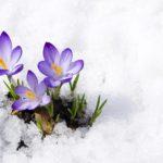 Ostern 2013 im Schnee